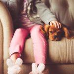 愛犬のために知っておきたい!ニオイでわかる口臭の原因とは?